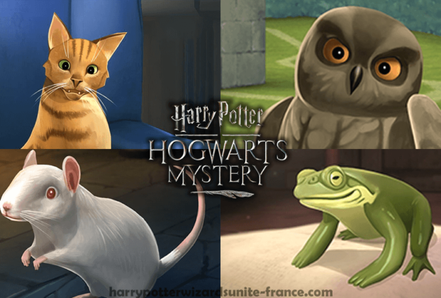 animaux-compagnie-hogwarts-mystery